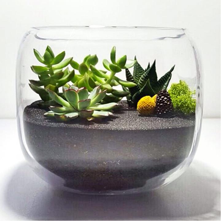 Özel Tasarım Cam Terrariumlar