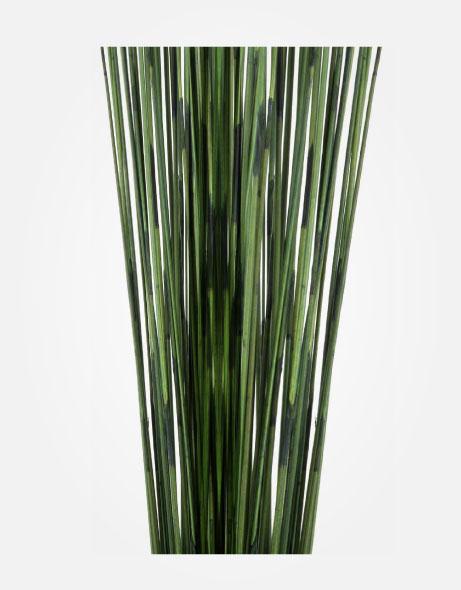 Yeşil Atölye - Şoklanmış Yaprak - Mash Reed