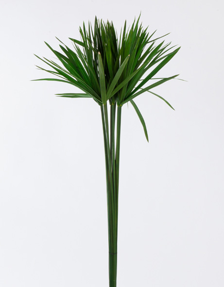 Yeşil Atölye - Şoklanmış Yaprak - Papyrus