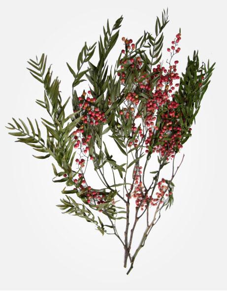 Yeşil Atölye - Şoklanmış Yaprak - Pepper Tree