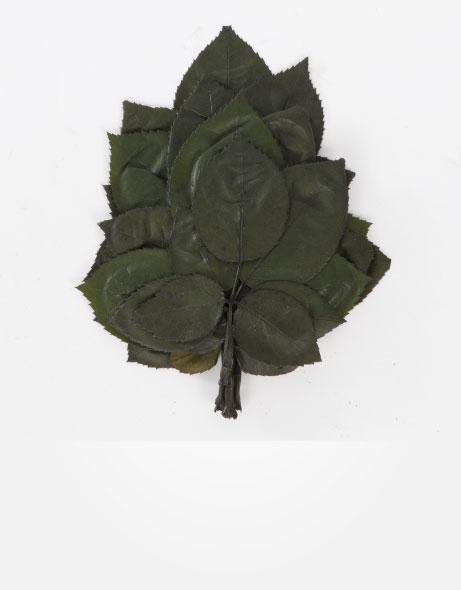 Yeşil Atölye - Şoklanmış Yaprak - Rose leaves