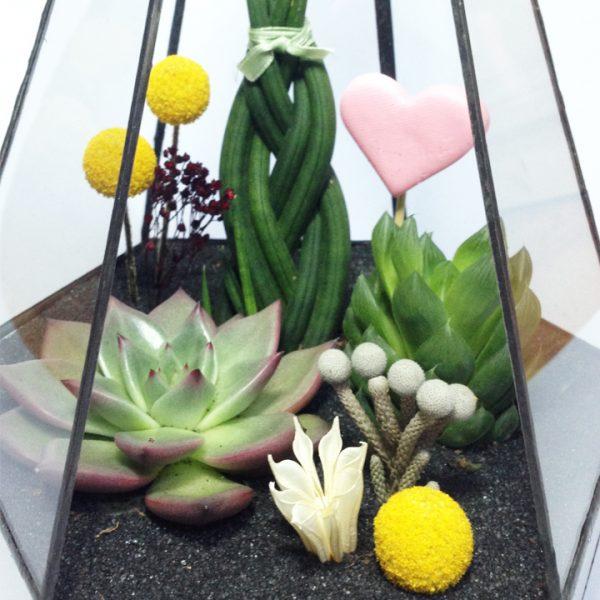 Yeşil Atölye - Altıgen Geometrik Terrarium