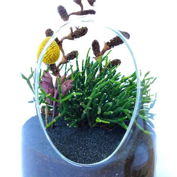 askılı terrarium