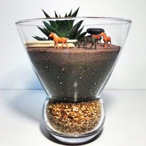 Kişiye Özel Konsept Terrariumlar