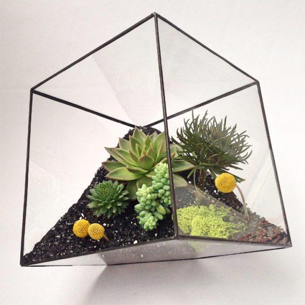 Yeşil Atölye - Geometrik Küp Terrarium – Büyük