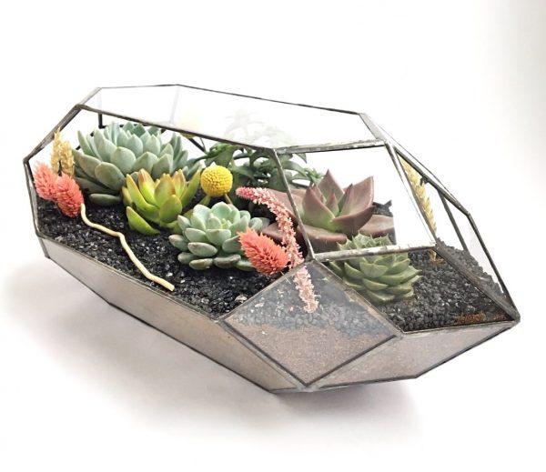 geometrik terrarium