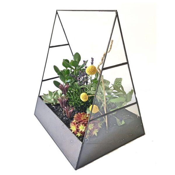 Yeşil Atölye - Geometrik Sera Terrarium