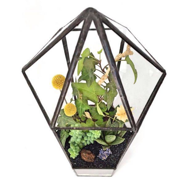 Yeşil Atölye - Kubbeli Geometrik Terrarium