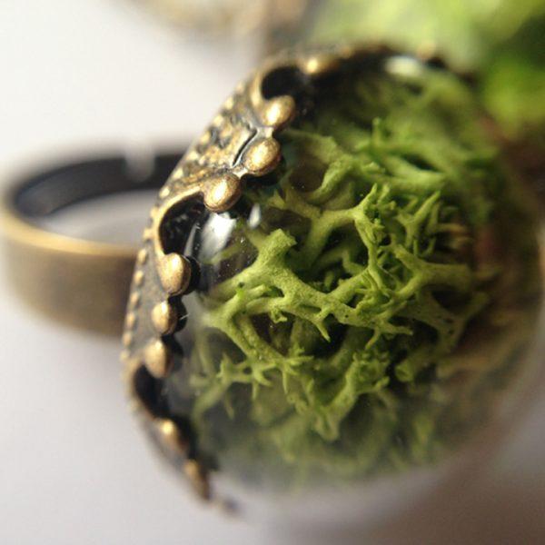 Yeşil Atölye - Otantik Terrarium Yüzük
