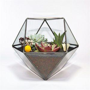 El Yapımı Geometrik Terrariumlar