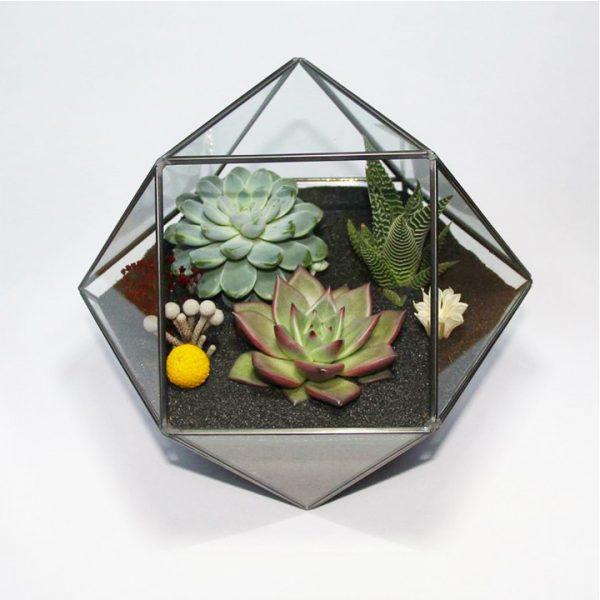 Yeşil Atölye - Polygon Geometrik Terrarium